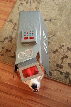 @Sheila Abbott @Heidi Abbott -  #K9 Corgi dogsplay! #DoctorWho