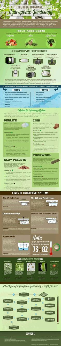 Guide To Hydroponic Gardening   #infographic #Hydroponic #Gardening #Farming #hydroponicgardeningbackyards #hydroponicsinfographic