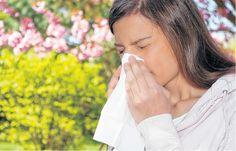 La primavera también es época de polen, alergias y estornudos. Salud. La Nueva. Bahía Blanca