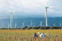 Le blog ecoCO2 « Blog Archive » Energie éolienne : des mesures de simplification votées