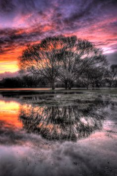 Rose sky reflected by Keith Britton, via 500px