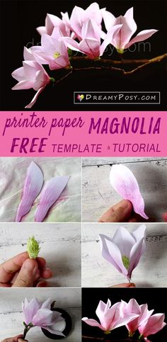 TUTORIAL VIDEO Paper Magnolia tutorial with free template, made from printer paper Wine Bottle Crafts, Mason Jar Crafts, Mason Jar Diy, Crepe Paper Flowers, Fabric Flowers, Handmade Flowers, Diy Flowers, Flor Magnolia, Magnolia Flower