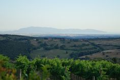 Amazing view of the Tuscan hilltops from la Capitana, in the heart of Maremma, home to our Summer Camps for kids and teens