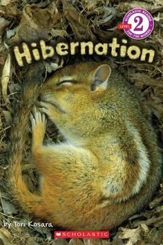 Learn all about animals and what they do during the winter! During the cold winter months, some animals go into a deep sleep called hibernation. You'd be surprised to learn about all of the other anim