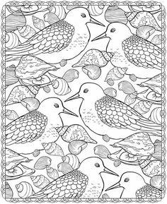 Seashell Patterns:
