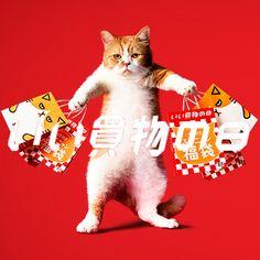 Japan Graphic Design, Graphic Design Illustration, Digital Illustration, Japan Advertising, Advertising Design, Cat Design, Animal Design, Design Japonais, Stupid Cat