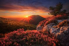 Mountain Sunset, Puy de Cliersou, France. Pic by Maxime Courty. Posted by Photobotos.com.