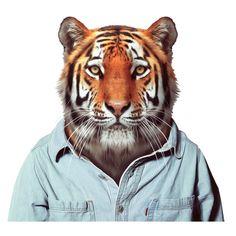 Zoo Portraits Blik (Los Angeles)