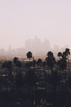 Los Angeles, California | ( by Sonja )