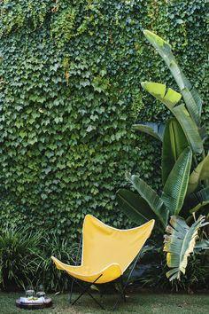 (via Modern Family Garden Care, Modern Garden Design, Landscape Design, Landscape Plans, Patio Tropical, Tropical Gardens, Tropical Landscaping, Ivy Wall, Vertical Gardens