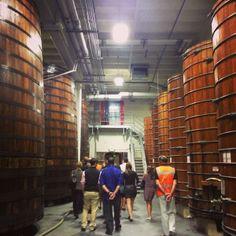 A visit to Beaulieu Vineyards, Napa Valley