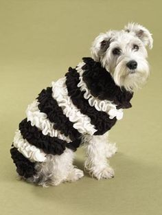 Ruffrageous Dog Sweater                   This would match my dogs