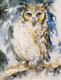 Owl Original Watercolor Painting Wall Art animal and Birds Owl