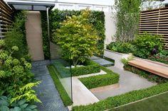 aménagement de patio moderne avec bordures en buis, mur végétalisé et banc en bois