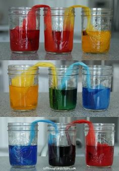 Cool Walking Water Science Experiment for Kids Walking Water experiment (and colour theory/ colour mixing too!)Walking Water experiment (and colour theory/ colour mixing too! Water Science Experiments, Preschool Science, Teaching Science, Science For Kids, Science Activities, Activities For Kids, Science Labs, Science Ideas, Educational Activities