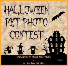 Halloween Photo Pet Contest
