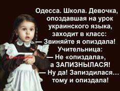 А собачиться по поводу обоих языков не достойно уважающих себя людей   Путешествия в шляпе   Яндекс Дзен