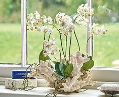 Orchids can grow in a variety of settings but this large moth orchid in coral. now that is unusual! Yet one of the joys of floral design is relishing contrasts Fake Flowers, Silk Flowers, Large Moth, Silk Orchids, Artificial Orchids, Moth Orchid, Orchid Arrangements, Flowering Trees, Typography Prints