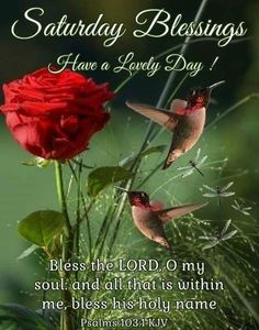 Saturday Blessings~~J~ Psalms Holy Saturday Quotes, Saturday Morning Quotes, Good Morning God Quotes, Good Morning Inspirational Quotes, Good Morning Happy Weekend, Happy Weekend Quotes, Saturday Greetings, Morning Greetings Quotes, Divine Inspiration And Prayers