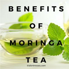 While detox teas and skinny teas may be all the rage theres a tea I've just stumbled on that I have to share. Here are the benefits of moringa tea. Calendula Benefits, Matcha Benefits, Lemon Benefits, Coconut Health Benefits, Curcuma Benefits, Cucumber Benefits, Tea Benefits, Safe Cosmetics, Tomato Nutrition