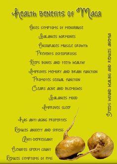 Health benefits of Maca