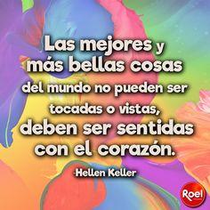Las mejores y más bellas cosas del mundo no pueden ser tocadas o vistas, deben ser sentidas en el corazón.   -Hellen Keller  #Frasedeldía