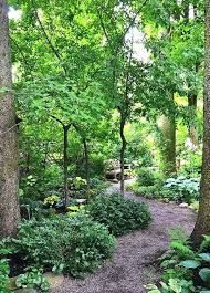 Forest Landscape Design Landscaping Ideas For Wooded Area Best With