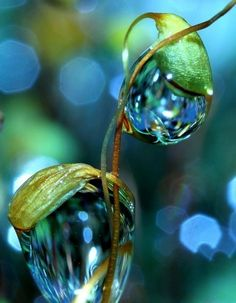 SWAG LIFESTYLE...Красивые картинки