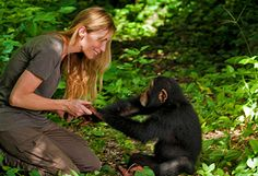 An Ape Species on the Edge of Extinction - Oprah.