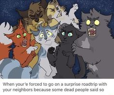 Ooo a voltron warrior cats thing Warrior Cats Comics, Warrior Cats Funny, Warrior Cat Memes, Warrior Cats Fan Art, Warrior Cats Series, Warrior Cats Books, Warrior Cat Drawings, Cat Comics, Warriors Memes