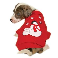 Holiday Twinkle Fiber Optic Dog Sweater - Extra Small *** Continue to the product at the image link. (This is an affiliate link) #Doggies