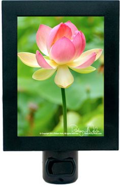 Lotus Flower Night Light by Robyn Nola. The lotus flower grows in muddy water and rises above the surface to bloom with remarkable beauty. The lotus symbolizes the purity of heart and mind and spiritual awakening.