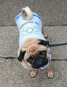 At The Canine Olympics via Spitalfields Life