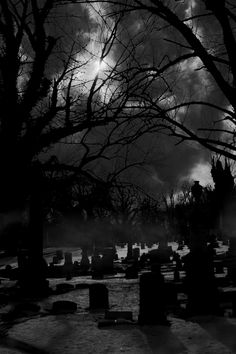 .Spooky setting - reminds me of the cemetery in Water's Blood by Elaine Calloway www.elainecalloway.com