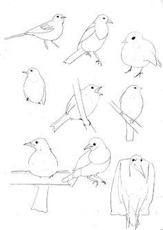 Quick bird drawings