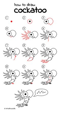 How to draw Cockatoo. Easy drawing, step by step, perfect for kids! Let's draw kids. http://letsdrawkids.com/