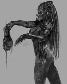 It is Predator fan art of monochrome rough sketch Alien Vs Predator, Predator Hunting, Predator Alien, Predator Costume, Female Monster, Fantasy Monster, Monster Art, Arte Alien, Alien Girl