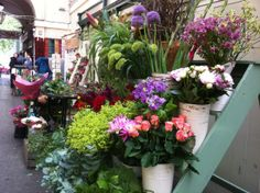 4 flores frescas para decorar interiores