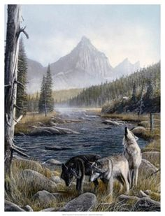 Vantage+Point+II Wolf Pictures, Wolf Photos, Wolf Images, Wildlife Art, Art Themes, Nature Scenes, Find Art, Original Paintings, Oil Paintings