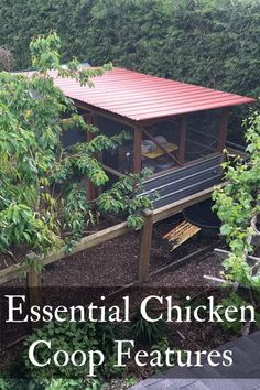 11 Chicken Coop Features I'll Never Live Without | Northwest Edible Life