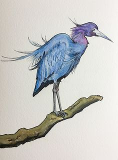 "Original Ink Acrylic and Pencil Drawing by Allyson Kramer ""Little Blue Heron"""