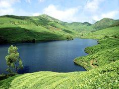 Tea garden & beautiful lake in Sylhet, Bangladesh. For Pinterest Campaign www.pinific.com