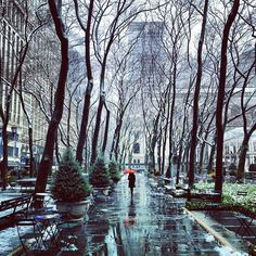 NYC. Bryant Park on a rainy day in March