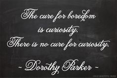 the cure for boredom is curiosity #wisdowm