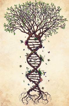 44 DNA ideas   dna, dna art, biology art