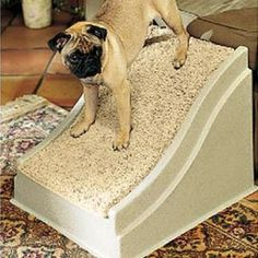 Dog Safety Ramps - Pawsteps Large Ramp -- Check out the image by visiting the link. (This is an Amazon affiliate link)