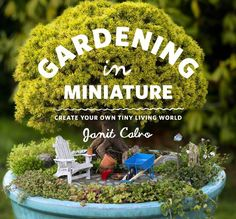 With a little help from the kids, shrink yourself down to a much tinier size and spend a few minutes thinking like a fairy. What kind of mini-garden and pr