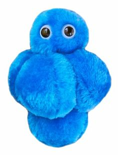 Giant Microbes Staph (Staphylococcus aureus).  Have this from the staph a vaccine team I worked on!