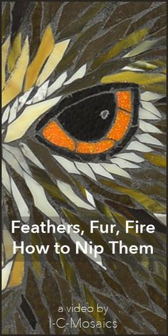 This easy to use nipping technique lets you add texture, depth and flow to mosaics. The video shows the technique and examples of how to apply it. http://www.i-c-mosaics.com/education/feathers-fur-fire-cut-from-glass.html
