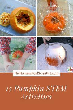 15 Pumpkin STEM activities - The Homeschool Scientist - fall science